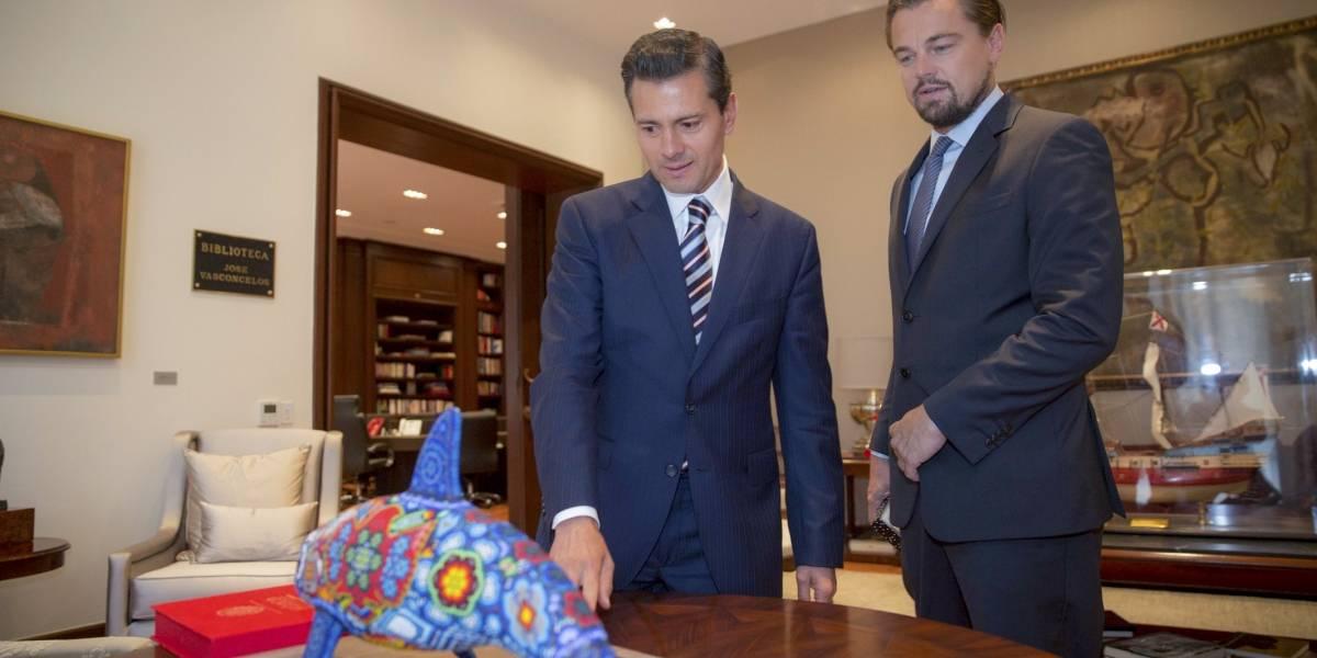 Leonardo DiCaprio agradece a EPN veda para protección de la vaquita marina