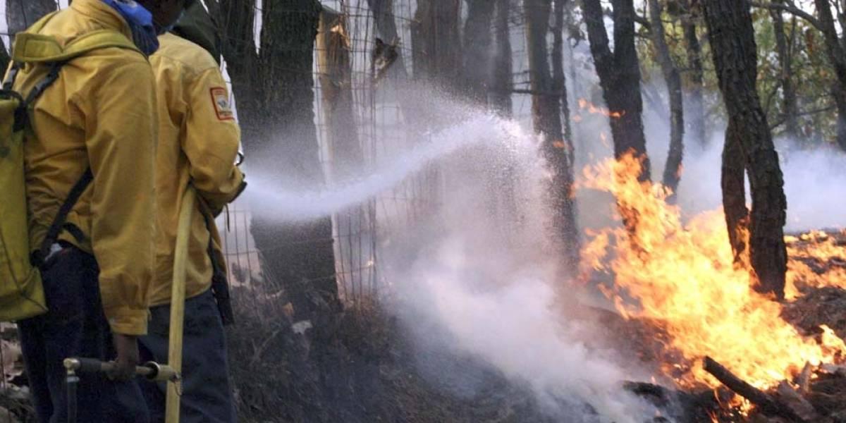 Jalisco registra su peor año en incendios forestales en dos décadas