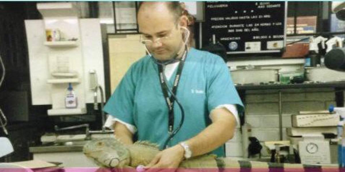 Masacre en casino de Chile: veterinario se quitó la vida inyectándose sustancia desconocida