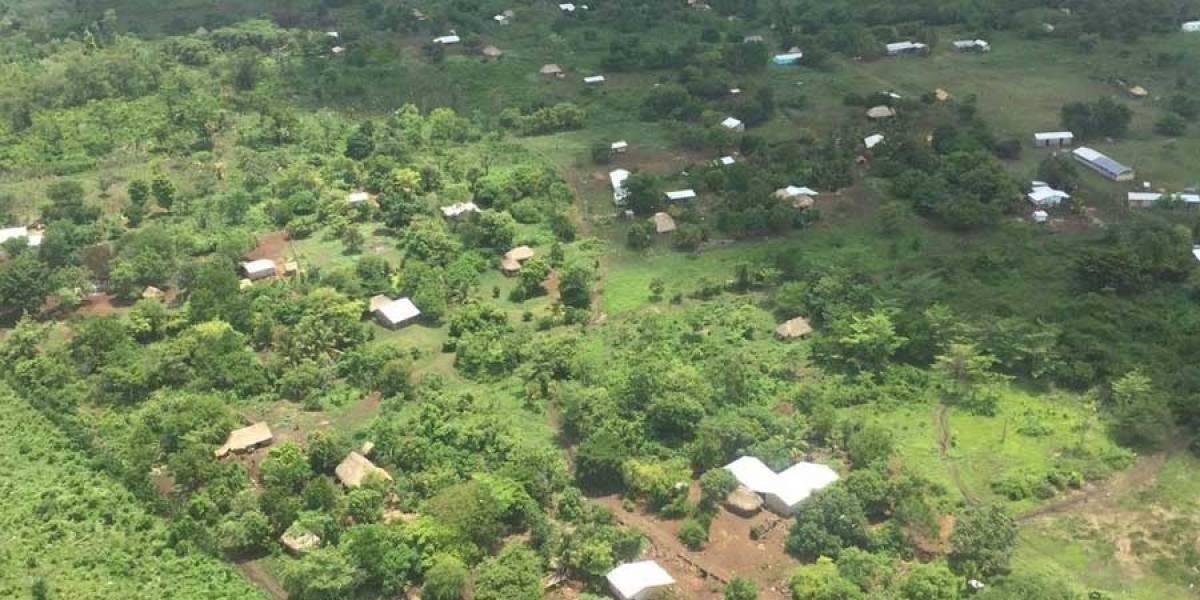 La narcodeforestación devora los bosques de Centroamérica