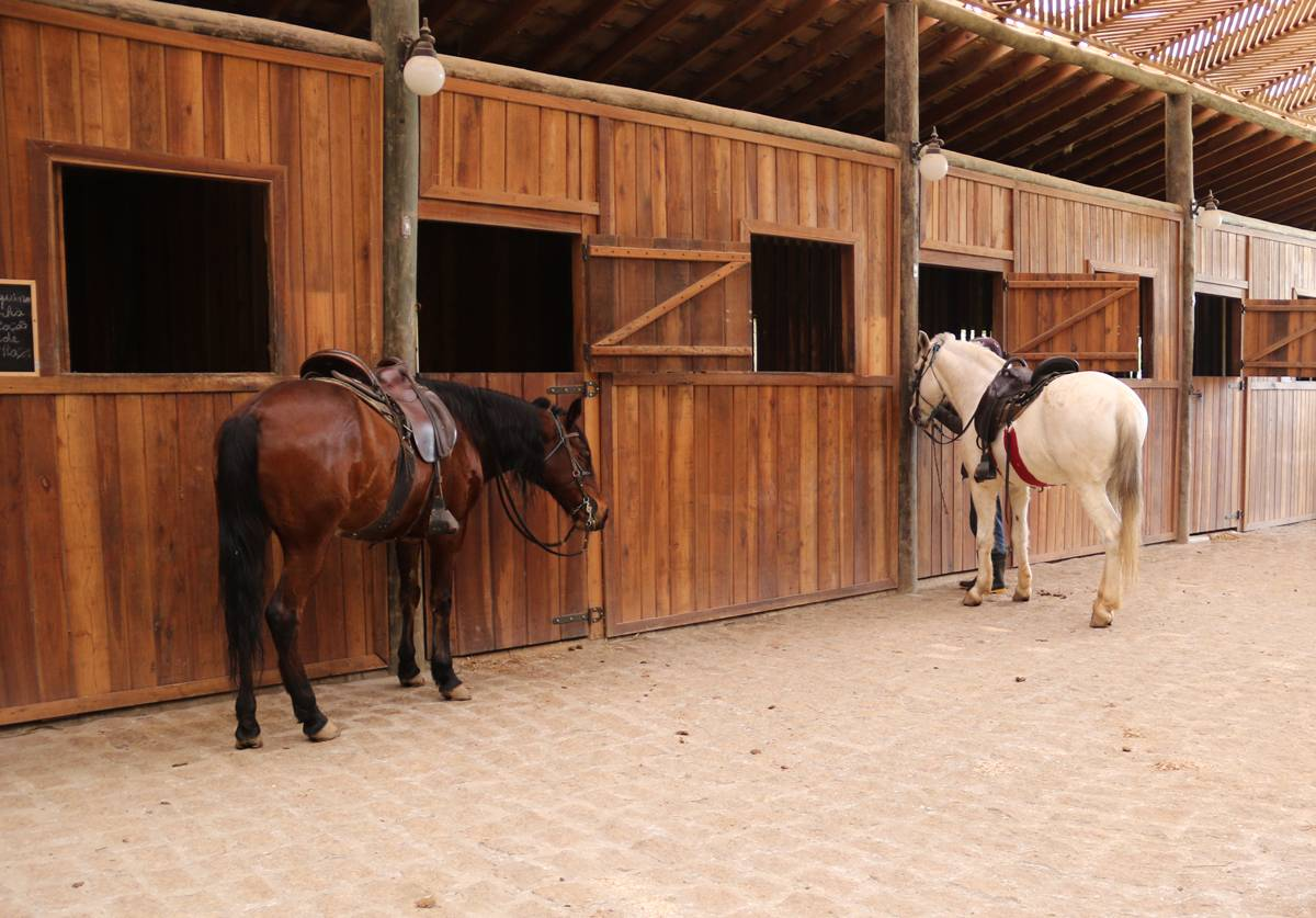 Na Vila Hípica Wener Haberkorn é possível escolher um cavalo para explorar as trilhas da fazenda. O passeio tem 50 minutos de duração e custa R$ 50 por pessoa | Eliane Quinalia