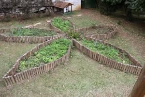 Mini horta