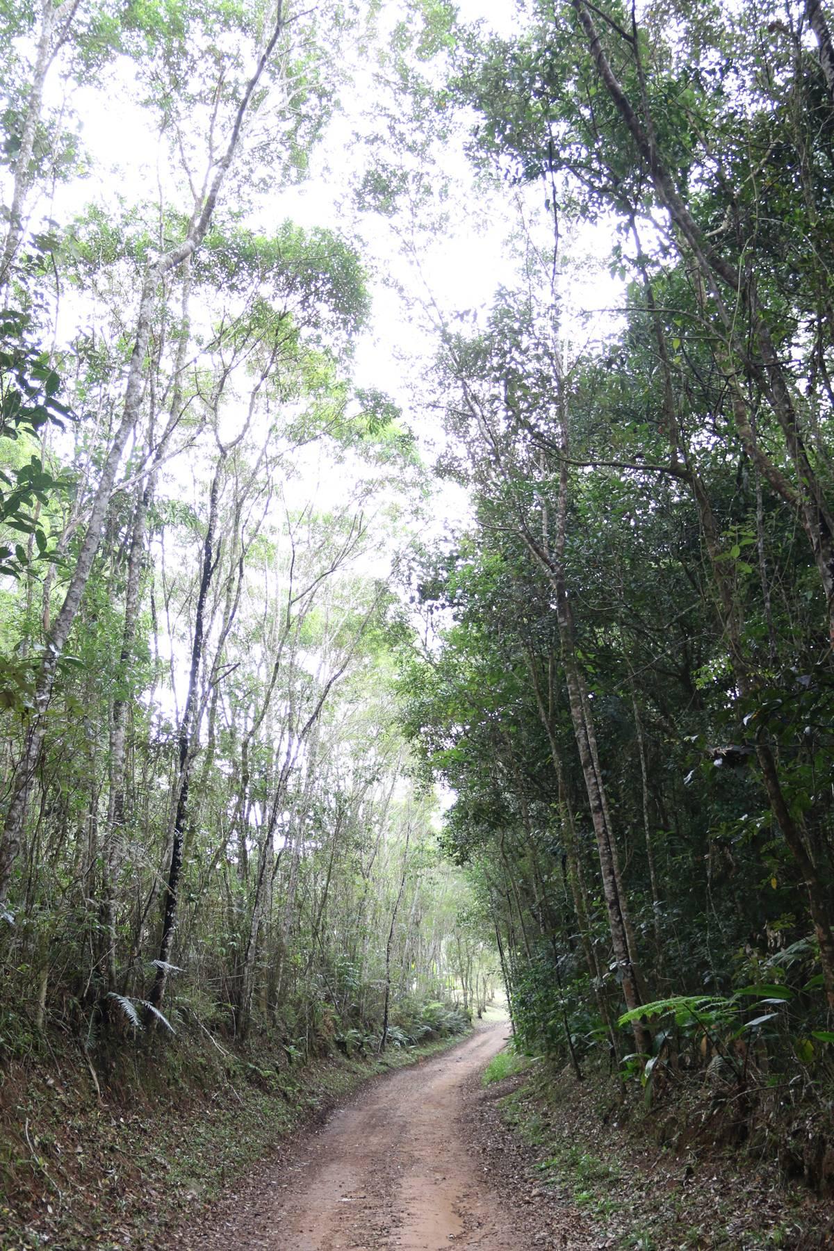 Hotel oferece 35 km de trilhas em meio à mata onde é possível conhecer quatro cachoeiras | Eliane Quinalia