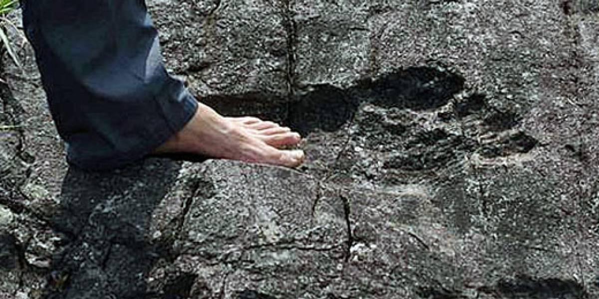 Descubren en China restos de unos 'gigantes' humanos
