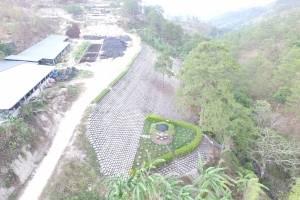 Eco Muro