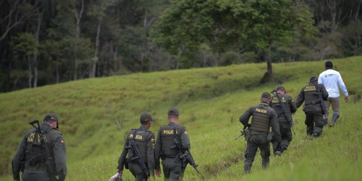 Colombia: Liberan a siete presuntos secuestrados por el ELN