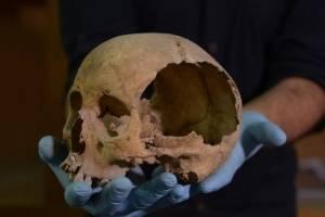 Cráneos hallados en México