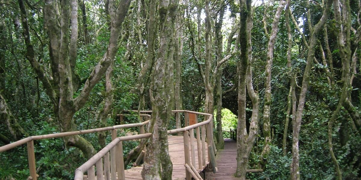 Invertirán $500 millones en el Parque Nacional Fray Jorge