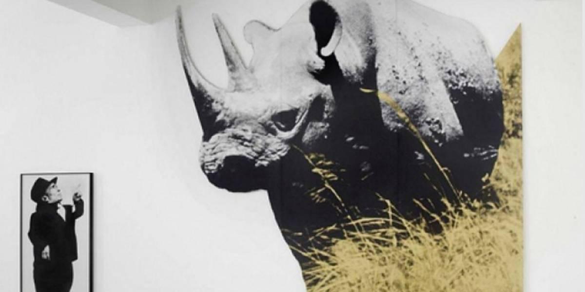 Por primera vez en México presentarán exposición de John Baldessari