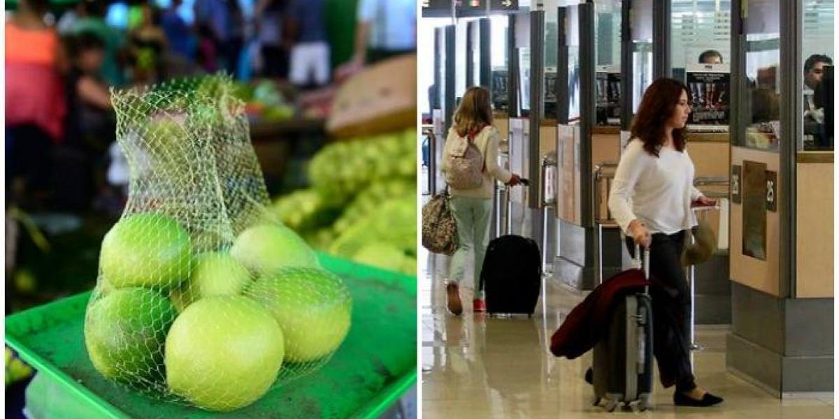 Lo que más bajó en junio: precios de limones, naranjas y viajes lideraron caídas