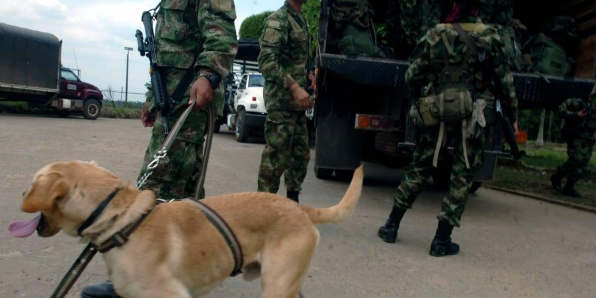 Seis heridos en ataque de disidencia de las Farc en Guaviare