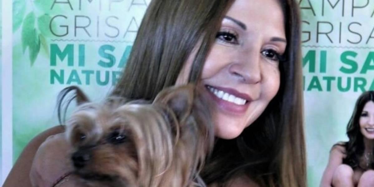 La pelea que se subió de tono entre Amparo Grisales y un usuario en Twitter