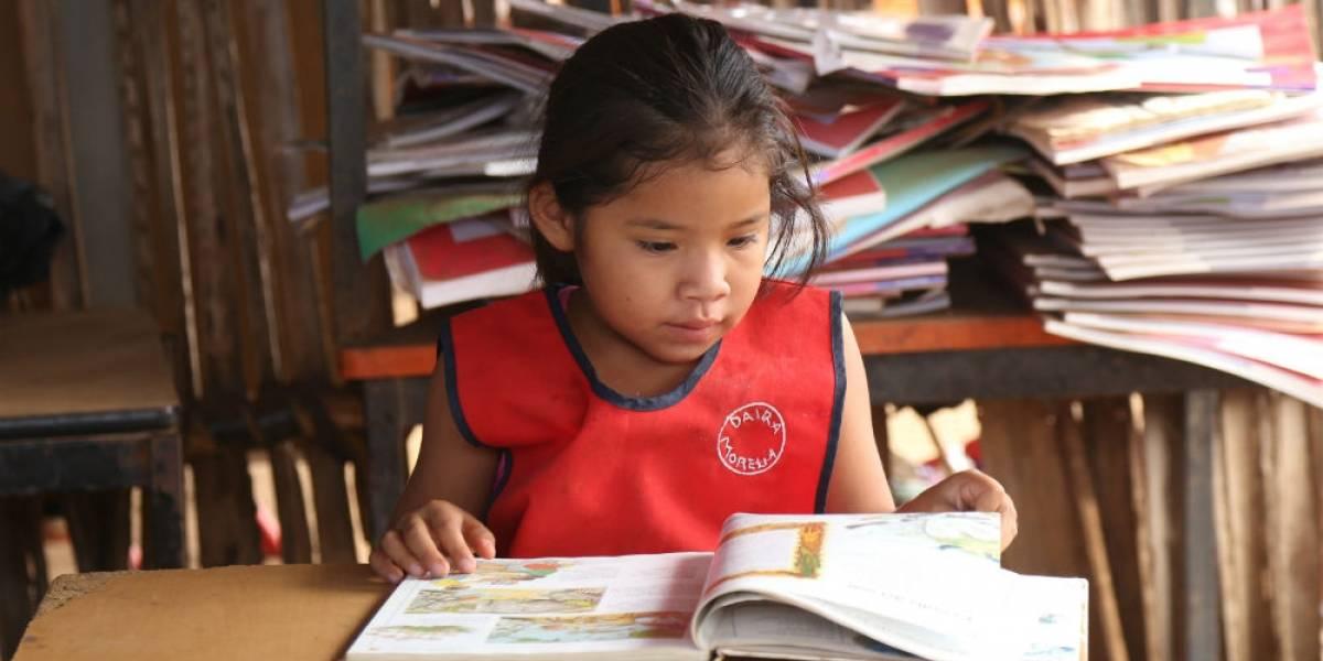 Crean colección de juguetes didácticos en siete lenguas indígenas
