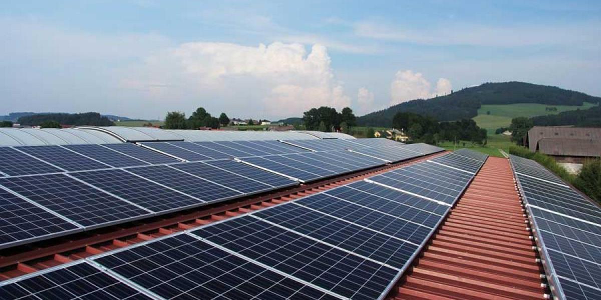 La planta de energía solar más adorable del mundo