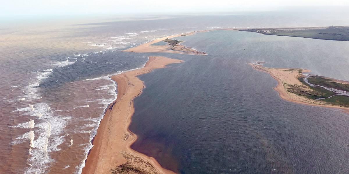 Surgem primeiros indícios de recuperação ambiental em Mariana