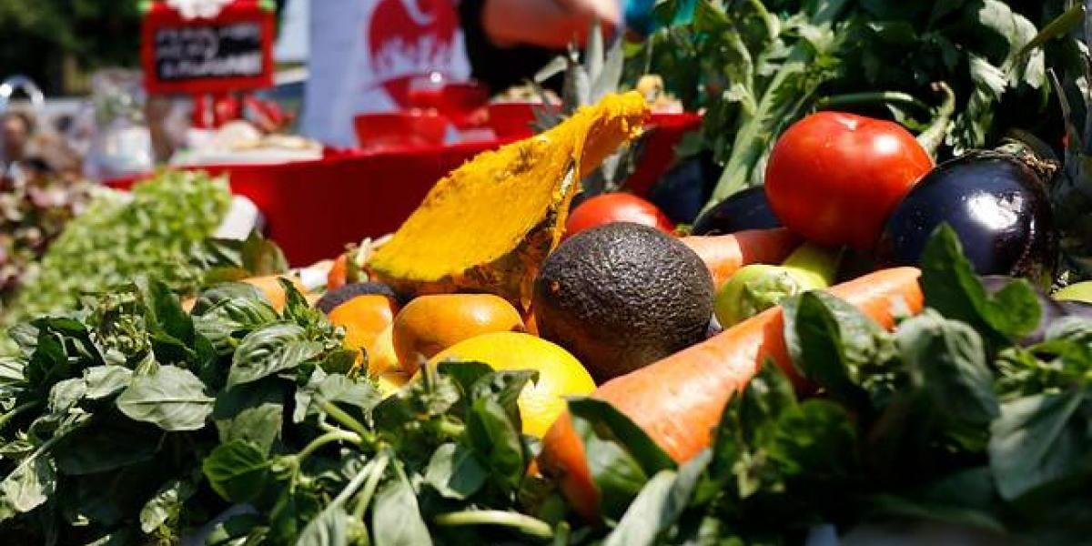 Demanda de alimento en el mundo crecerá más lentamente la próxima década
