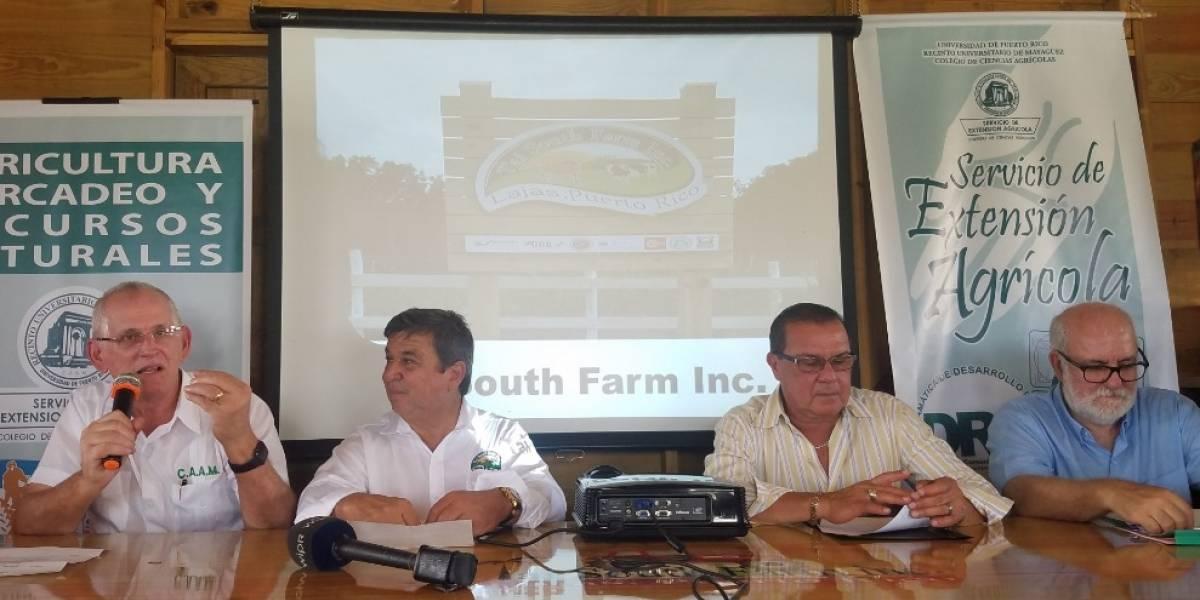 Colegio de Ciencias Agrícolas del RUM reconoce Primera Finca Modelo