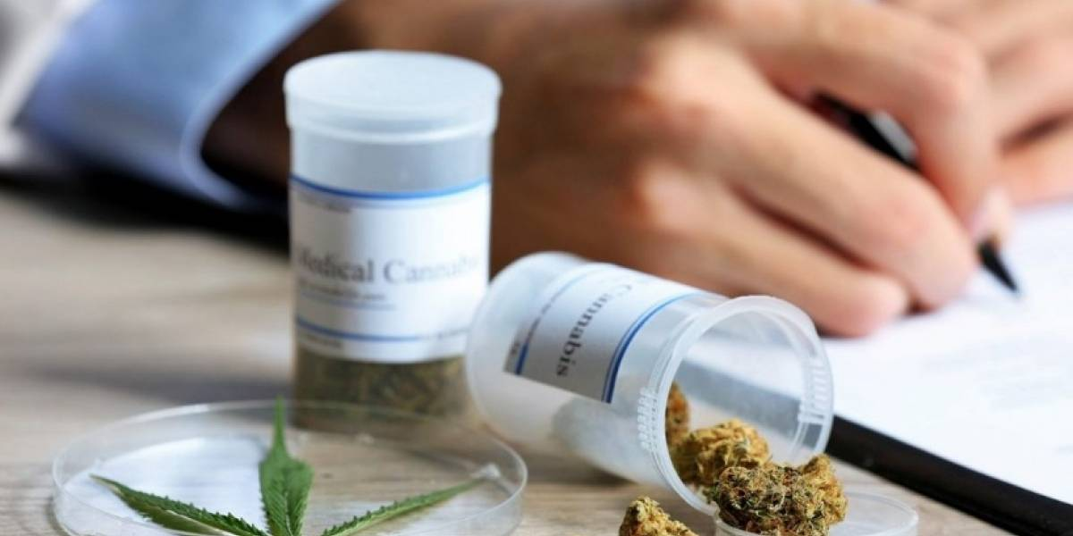 Compañía de cannabis medicinal se compromete a educar sobre la nueva ley