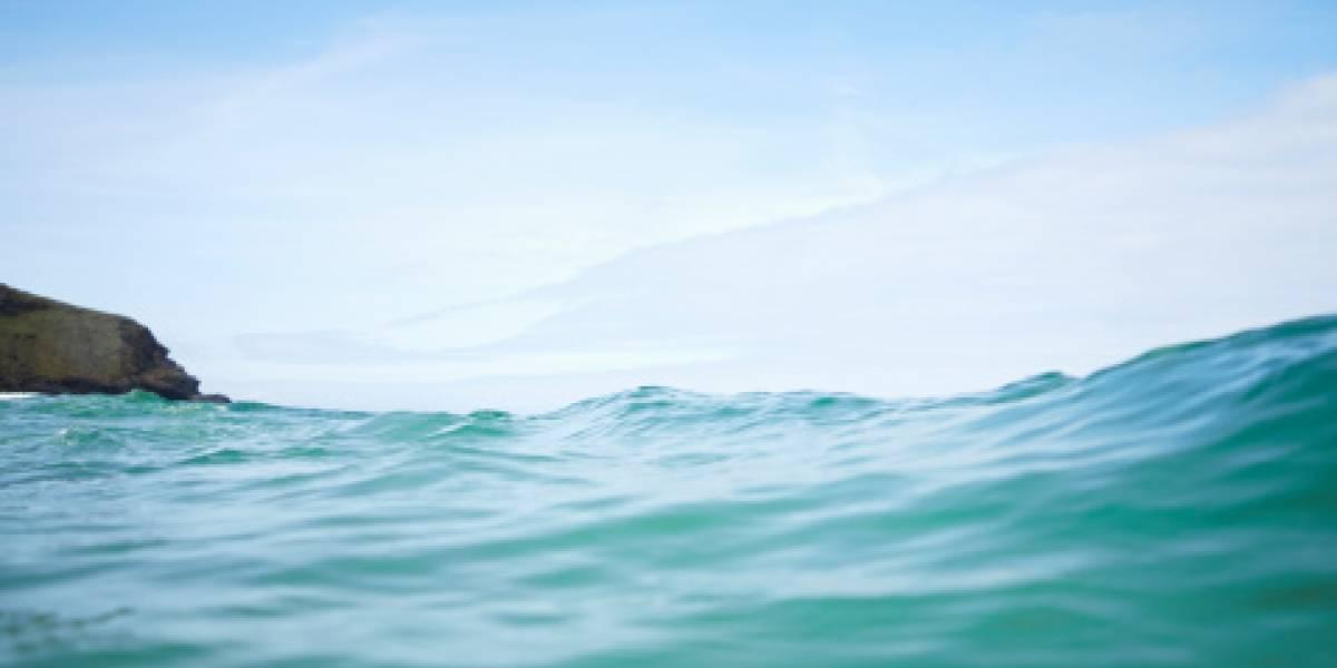 Una cadena humana salvó a una familia de morir ahogada en Florida