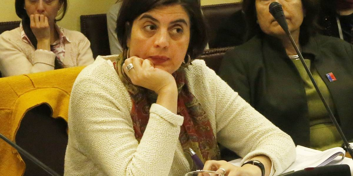 """Ministra Pascual por fallo en Caso Nabila Rifo: """"No nos deja conformes"""""""