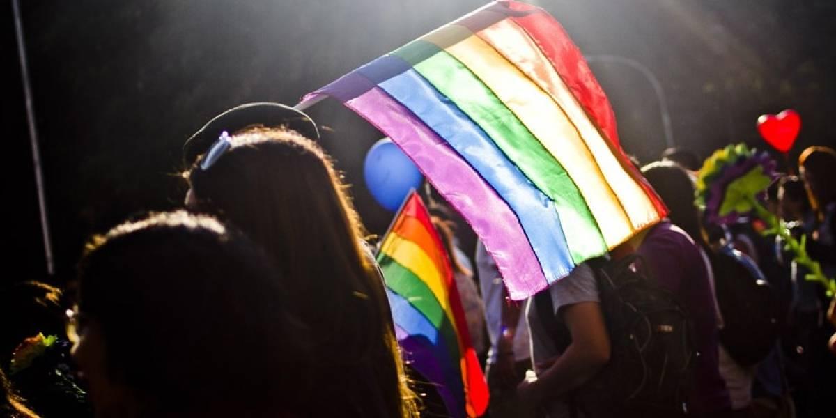 """Gobierno: """"El Estado nunca se obligó a aprobar el matrimonio igualitario"""""""