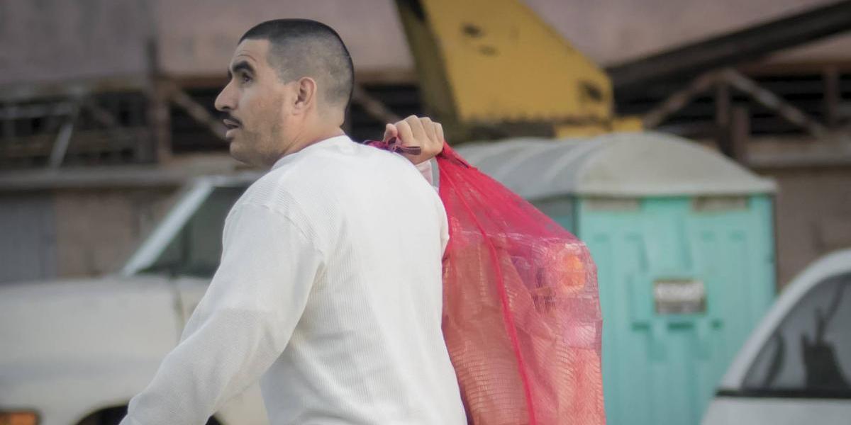 Migración de trabajadores mexicanos a EU durará hasta 2029, estudio