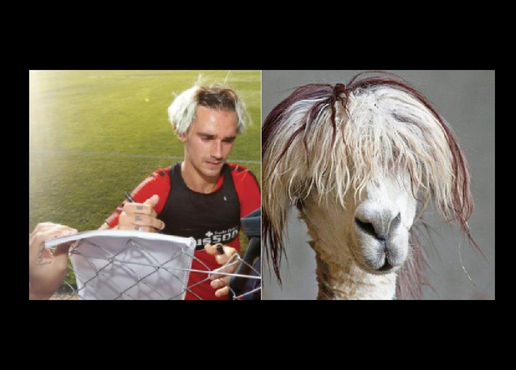 Qué se hizo Antoine Griezmann en la cabeza — Explotan los memes