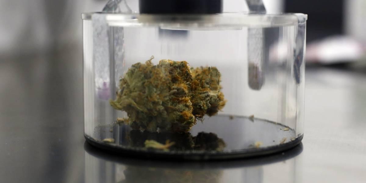 No cayó bien aquí reversa de Justicia federal al cannabis