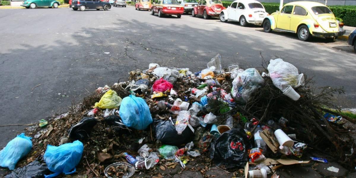 ¿Y si en lugar de separar la basura… dejáramos de producirla por completo?