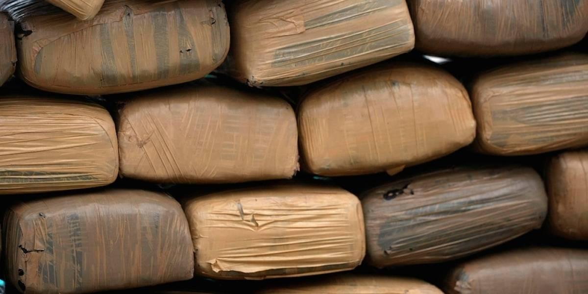 Decomisan tonelada de mariguana en bodega de Nuevo León