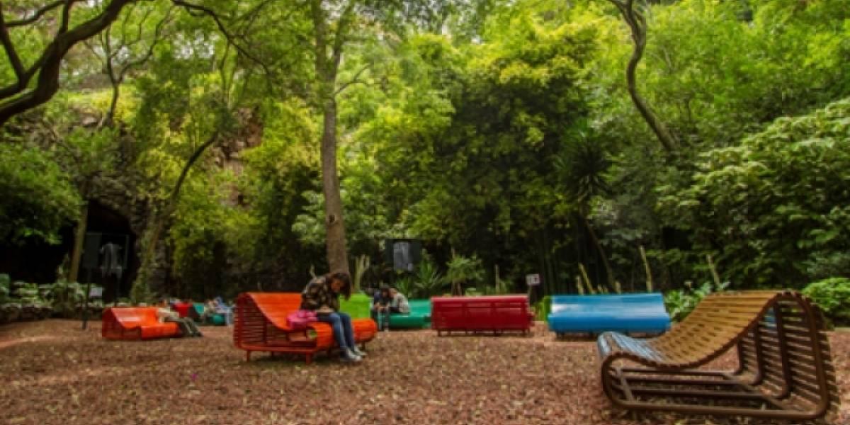 Proyecto promueve arte y creatividad en el Bosque de Chapultepec