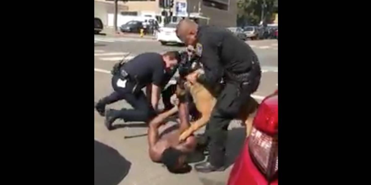 Perro policía ataca a sospechoso mientras estaba esposado