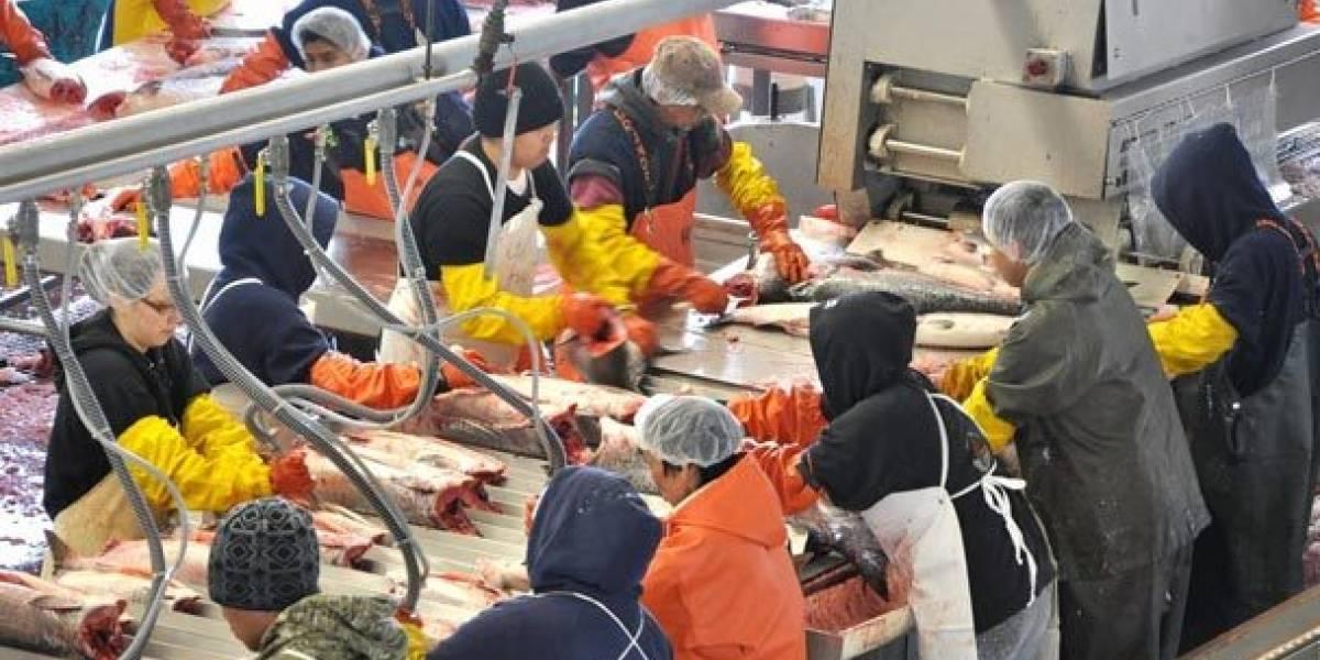 Joven boricua denuncia trato inhumano en pescadería de Alaska