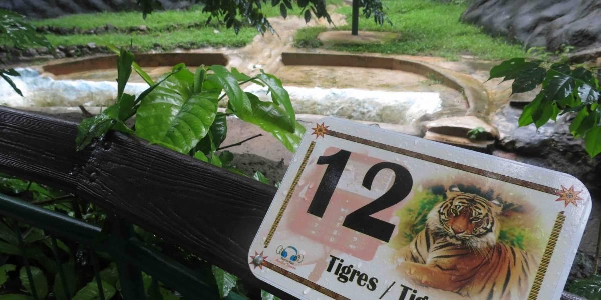 Gobernador evalúa cierre parcial del Zoológico de Mayagüez