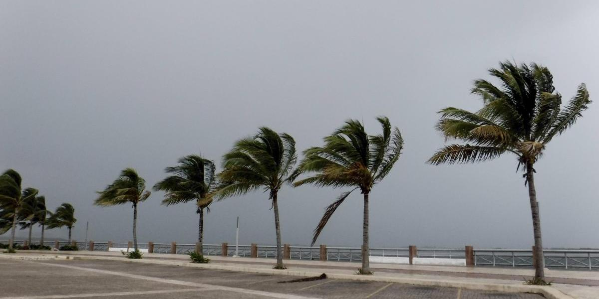 Conagua incrementa previsión de huracanes; se esperan 9 de alta intensidad