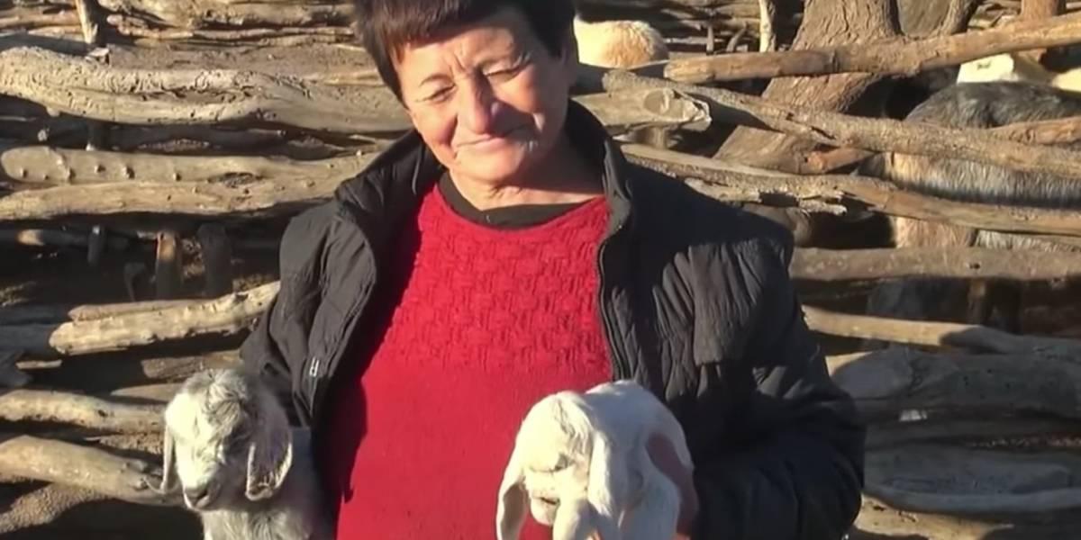 """Impacto en Argentina por nacimiento de cabra con rostro humano: """"Se parece a Voldemort"""""""