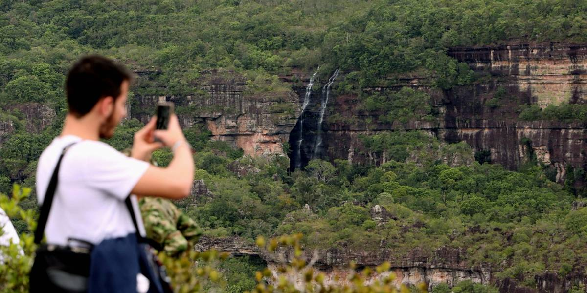 La Serranía de Chiribiquete y otros parques, libres de coca