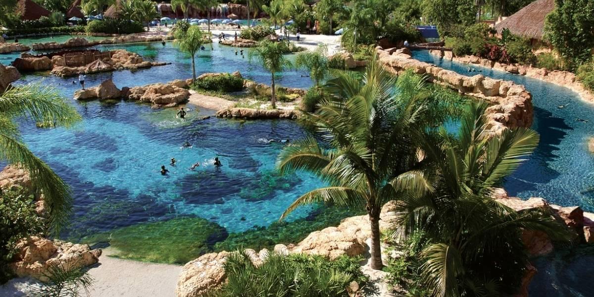 Discovery Cove un paraíso acuático en Orlando