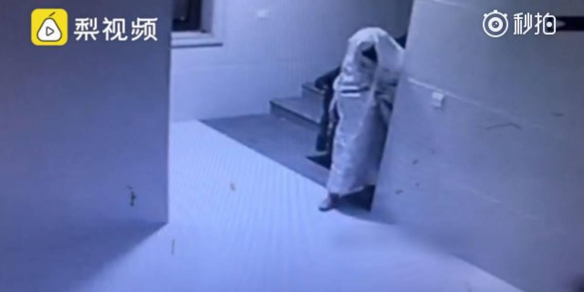 Insólito método: ladrón intenta engañar a cámara de seguridad disfrazándose de fantasma