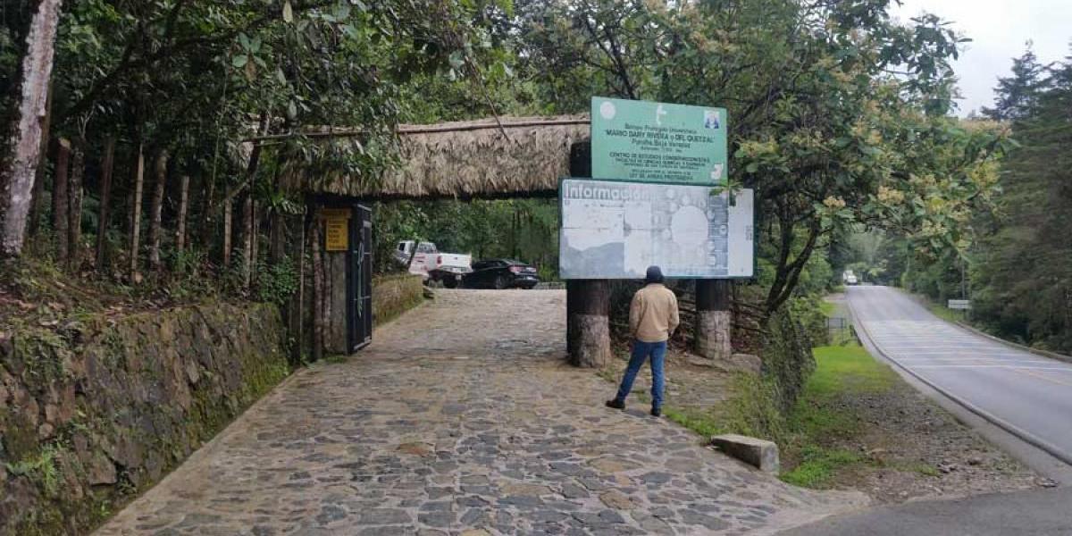 """¿Aún no has visitado el Biotopo del Quetzal """"Mario Dary Rivera""""? ¡Conócelo!"""