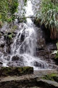 Catarata en el Biotopo del Quetzal Mario Dary Rivera