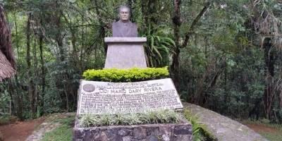 Busto de Mario Dary Rivera