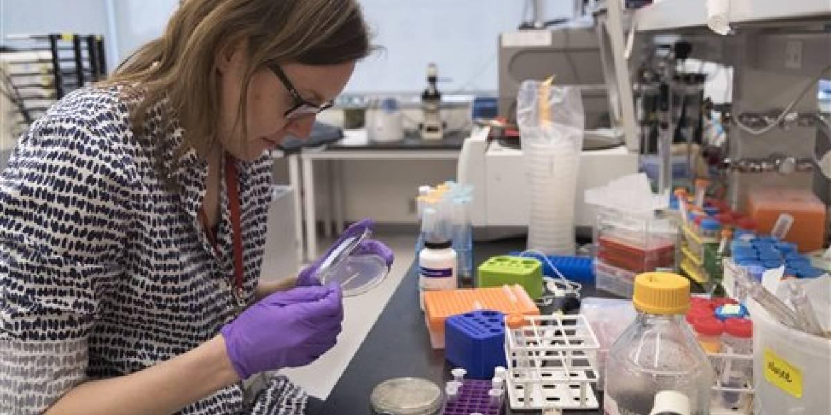 Científicos producen ADN desde cero