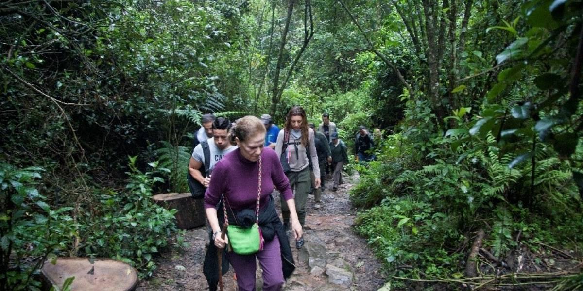 Por excesiva presencia de caminantes ordenan cerrar sendero de la Quebrada La Vieja