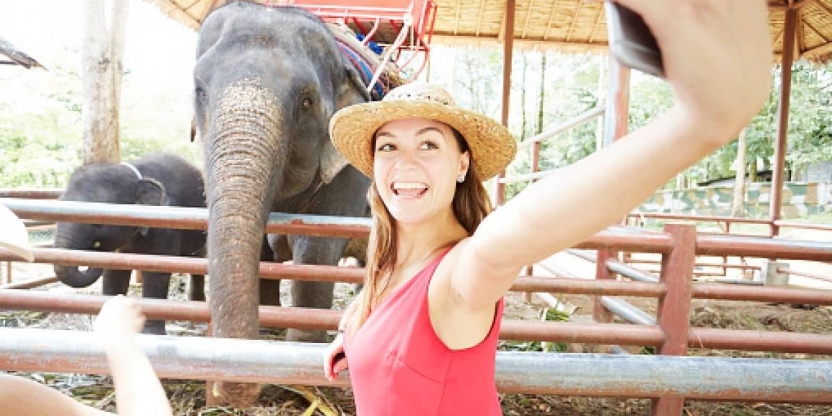 Joven murió mientras se sacaba un 'selfie' con un elefante