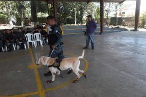 Jubilación de agentes caninos de PNC