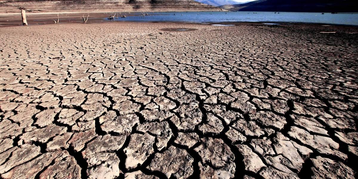 El desierto apura el paso: experto prevé su avance en 3 km por año