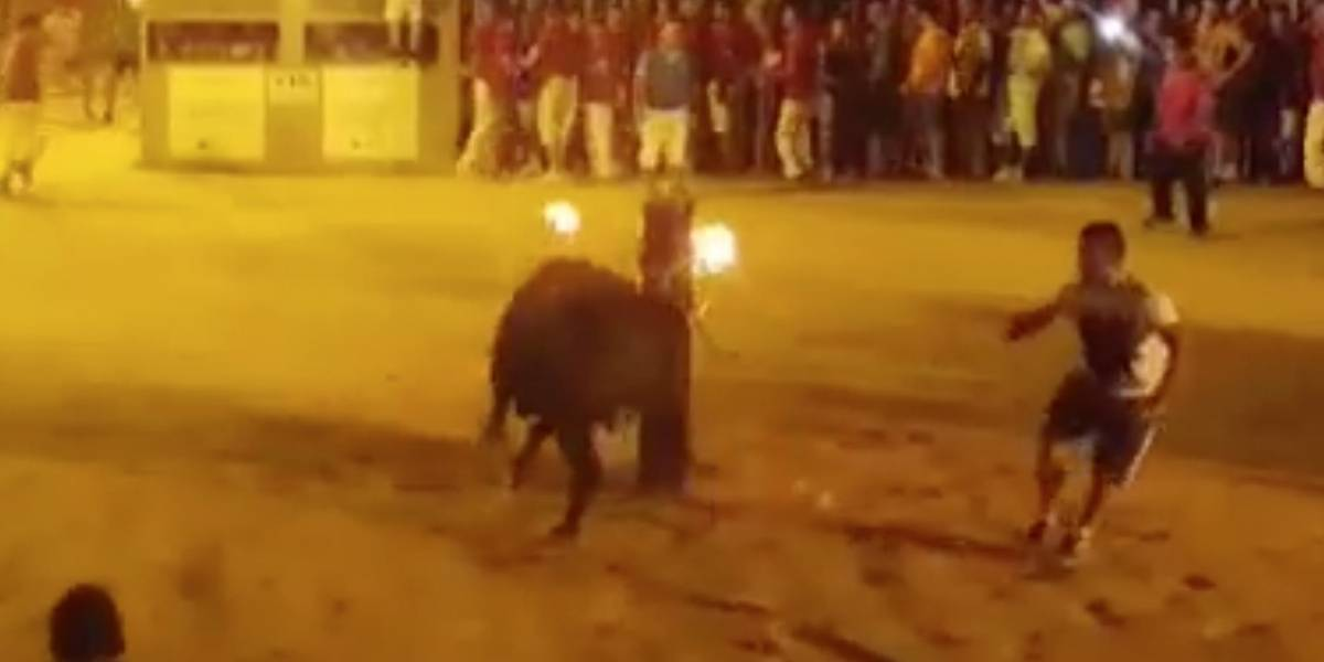 """El impresionante """"suicidio"""" de un toro al que le prendieron los cuernos como parte de una celebración"""
