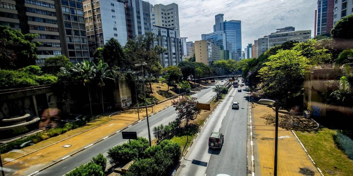 Em São Paulo, árvores ocupam apenas 11,7% das ruas