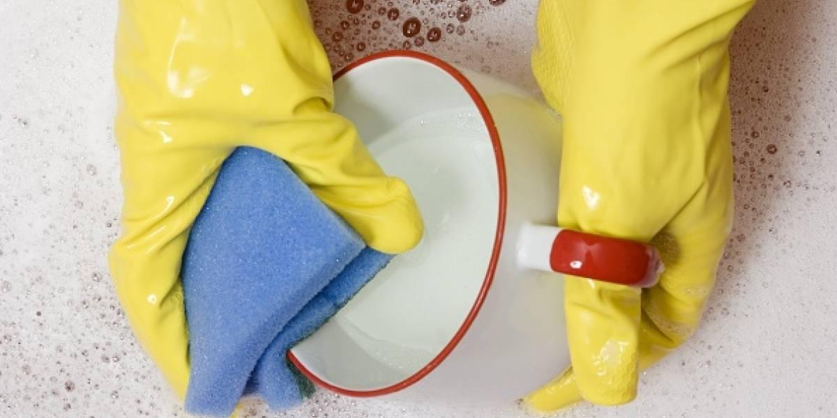 Enemigo impensado: la esponja de cocina tiene tantas bacterias como un inodoro